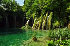 plitvice national park (Mario Barzionni) Tags: park blue wild wallpaper parco lake verde green nature water beautiful beauty lago waterfall natura acqua azzurro croazia spettacolo plitvice spectacle cascata limpido