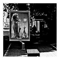 celebrity (japanese forms) Tags: japaneseforms2016   aanplakbord advertentie bw billboard blackwhite blackandwhite blancoynegro bokeh candid celebrity charlizetheron dior jadore monochrome random reklamaboord reklametafel schwarzweis square squareformat strasenfotografie straatfotografie streetphotography vlaanderen woodyallen zwartwit
