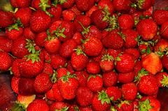 Tasty Flickr (ChemiQ81) Tags: truskawki owoce czerwone strawberry strawberries jahoda jahody ovoce fruits fruit truskawka red
