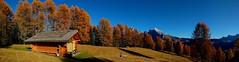 The secret spot _PANO_20161031_144334m2(3) (maxo1965) Tags: alpedisiusi logcabin panorama sassopiatto seiseralm landscape südtirol fallcolors larches herbst autumn secret spot october