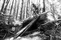 Fromme Downramp (ryankremsater) Tags: mountainbiking fromme north shore forest britishcolumbia
