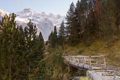 Gavarnie. (Claude ROCHEREAU) Tags: automne couleurs feuillage fort gavarnie lieux montagne neige paysage pont rservenaturelle typedephoto fort rservenaturelle