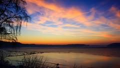 Sunset (michel1276) Tags: outdoor sonnenuntergang sunset himmel sky wolken clouds ufer landschaft landscape see dmmerung haltern stausee winter