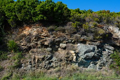 A rock formation that includes schists, including an attractive green rock, alongside the D80, south of Porticciolo (boxcorner) Tags: corsica corse hautecorse uppercorsica schist porticciolo