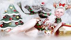 THAT THE CHRISTMAS DREAMS HAPPEN  (Annyzinh Oliveira) Tags: zenith tannenbaum 25th nov dec les sucreries de fairy the chapter four gift astralia crossroads moonamorecureless arcade gacha events hair group vip truth bauhaus movement