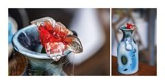 All Glass (red stilletto) Tags: oakdenewinery oceangrove bellarine wallington famousflickrfive colourpalettes vase glass sculpture flower winery cobwebs macro
