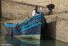 Gull - Essaouria, Morocco (Hans Olofsson) Tags: 2016 blue boat essaouira marocko morocco ouadia1 vatten water fish fisherman gull medelhavstrut yellowleggedgull larusmichahellis
