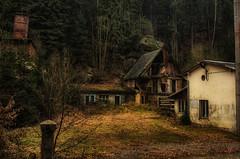 crispy cottage (Rainer Schund) Tags: crispy cottage urbex abandoned abandonn abandonada abend nikon nikond700 sachsen alt marode verlassen verfall schimmel wald wlder forrest forgotten forest