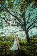 2016-08-10-083510-(c)-Toh-Gouttenoire-Costa-Rica-wedding- (durwoodsuzie) Tags: ttd