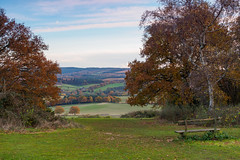 Newlands Autumn 16 EB180309_01 (tony.rummery) Tags: autumn autumncolours em10 landscape mft microfourthirds newlandscorner omd olympus surrey surreyhills viewpoint albury england unitedkingdom gb