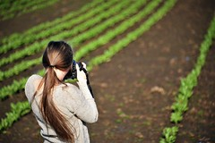 Fieldographer (niKonJunKy22) Tags: wife girl woman melissa photographer photography plant plants field dirt green brown outdoor outdoors outside color colors colorful dof fieldofview depthoffield nature natur beautiful beauty love d610 d700 nikon nikond700 nikkor