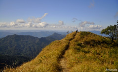 On top of the world- Reiek peak,Mizoram (mala singh) Tags: mountains himalayas northeastindia india mizoram