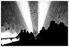 silhouetten. tube. (HansEckart) Tags: hamburg sw bw blackandwhite hafencity philharmonie tube schattenriss silhouetten