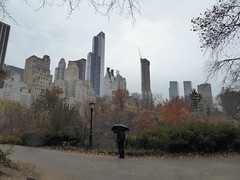 Central Park New York November 2016 (1220) (Richie Wisbey) Tags: new york central park manhattan ulmsted man made vista view spectacular miles walks lakes ice rink trump feeding sparrows hot dog american space open public beauty bow bridge oak trees grass richie richard wisbey flickr explore exploring zoo