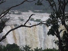 World Famous Jog Falls Photography By CHINMAYA M.RAO Set-1 (179)