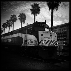 En voiture .... (CTfoto2013) Tags: light ciel sky iphone6 iphone hipstamatic palmtrees palmiers travel voyage california sandiego locomotive carr square blancoynegro blancetnoir noiretblanc blackandwhite downtown ville city train