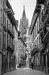 Camino a la Catedral (Enrique Garcia Polo) Tags: torre bn bw calle oviedo blancoynegro catedral asturias principadodeasturias espaa es