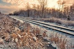 (Jolynn's Photography) Tags: snow railtracks landscape scenery winter trees outdoors