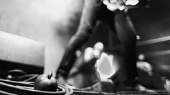 Brutal Assault 2015 Official Gallery - Bands @Pevnost Josefov, CZ [5-8.8.2015] (Photography | Digital Art) Tags: friends bw music color livegig metal canon lens fire photography official concert gallery fotograf photographer czech prague gates live report wide performance photojournalism atmosphere praha assault event bands hardcore cult cz aniversary fans backstage filth heavy emotions fortress mayhem metalcore atmosfera marius journalism skepticism 20th photogprahy blogpost brutal esoteric cradle reportage bts photooftheday josefov marduk primordial 2015 kalba ludia musicphotography reportaz phurpa photojounalism lovemyjob brutalassault pevnost jaromer 5d2 sachtikus mariussachtikus sachtikusjepan