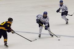 IMG_0415 (Armborg) Tags: hockey wilma sofia dam if engstrm ekstrm bryns leksands