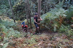 _DSC5363 (pabloviota) Tags: trail samano