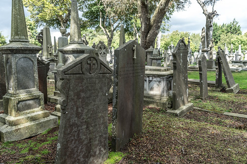 GLASNEVIN CEMETERY [MY FIRST DAY USING THE NEW SONY A7RMkII] REF-107394