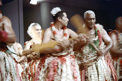 28-783 (ndpa / s. lundeen, archivist) Tags: flowers costumes people man color men film festival fiji 35mm costume clothing blurry ribbons dancers dancing stage traditional nick group performance paddle culture suva outoffocus lei clothes southpacific oar 28 tradition leis 1970s performers 1972 skirts oars paddles dewolf oceania fijian pacificartsfestival pacificislands festivalofpacificarts southpacificislands nickdewolf flowersintheirhair photographbynickdewolf flowersinhishair festpac pacificislandculture southpacificfestival reel28 southpacificartsfestival southpacificfestivalofarts fiji72