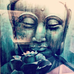 Have a great Friday Friends! #Peace #Love #Harmony #stillness (Yoga Army - Phashion Army) Tags: square nashville squareformat iphoneography instagramapp uploaded:by=instagram