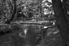 Soando despierto. (Lautaro Marhetti) Tags: longexposure bw lake water agua bn nd bnw largaexposicion densidadneutra