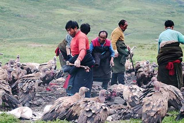 Tây Tạng 2