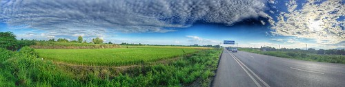 Paddy Field  Sightseeing