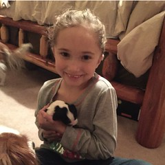 """Kendra loves the puppies. • <a style=""""font-size:0.8em;"""" href=""""http://www.flickr.com/photos/72564046@N04/22067416385/"""" target=""""_blank"""">View on Flickr</a>"""