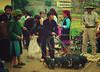 IMGP9357 (crazyycat.0209) Tags: hagiang ethnicmarket dongvan weeklymarket hàgiang chợphiên đồngvăn dântộcthiểusố trẻemvùngcao chợphiênđồngvăn dongvanethnicmarket fivecolorstickyrice