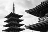 Asakusa, Tokyo (MCorrigan1983) Tags: bw japan sensoji tokyo nikon tmax 400 f80 asakusa kodaktmax400 2015 nikkor50mmf18d 400tmx
