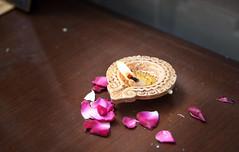 IMG_5358 (iskconmonk) Tags: festival prabhupada swami kartik prabhu brahmananda vrindavan iskcon swamiji sanyasi goshala iskconvrindavan