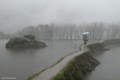 (Sherwin_andante) Tags: fog taiwan xa2 fujifilm taipei yangmingshan 2015 富士 201512 八煙聚落