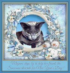 Megumi stops by to visit her friends the Snowmen decorate for New Year's Day! (martian cat) Tags: christmas pet macro cat cards kitty newyears inspirational merrychristmas caption allrightsreserved happynewyear russianblue motivational feliznavidad megumi kittycat buonnatale motivationalposter glcklichesneuesjahr felizaonuevo bonneanne joyeuxnol kurisumasuomedeto buonanno allrightsreserved  martiancatinjapan allrightsreserved   martiancatinjapan martiancatinjapan frhlichiwiehnacht omedettogozaimasu allrightsreserved martiancatinjapan captioncollection