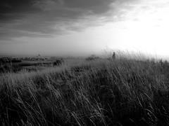 Dans les herbes... (Clydomatic) Tags: paysage herbes village