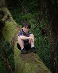 Natures Bridge (Michelle.Barton.Images) Tags: boy bridge tree creek spring bush australia child portrait ferns moss log
