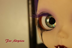blythe real copper eyes (Dusk~) Tags: blythe ooak custom doll vampire purple eye lids chips dress bear box outside piparrot reroot adoption