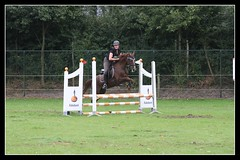 Jumping (gill4kleuren - 12 ml views) Tags: jumping springen lisse keukenhof keukenhofbos horses hose paarden people outside green grass woman girl playing fun