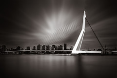 T H E  B R I D G E (martijnvdnat) Tags: dutch holland netherlands rotterdam architecture bridge building cable city cityscape construction downtown engineering erasmus erasmusbrug europe harbour kopvanzuid landmark longexposure maas meuse modern monument river skyline structure travel urban water wire zwaan zuidholland nederland