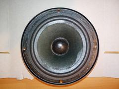 2016-11-06--221327 restauro casse (MicdeF) Tags: altoparlante cassa casse casseacustiche indianaline loudspeaker midrange restauro riconatura sospensione sospensioni woofer geo:lat=4193466523 geo:lon=1254016936 geotagged