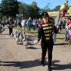 The Marching Geese (Davydutchy) Tags: flaeijelfeest flaeijel feest festival nijhoarne nieuwehorne ldhoarne oudehorne frysln friesland frisia frise nederland netherlands niederlande paysbas holland dorpsfeest village feast 1920s 1930s country life platteland agricultural community gans ganzen ganzenmars goose geese marching gnse uniform september 2016