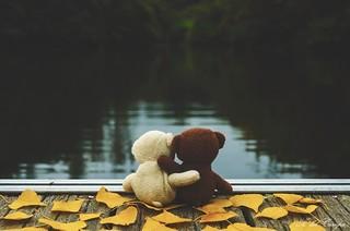 Mirando al otoño