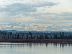 When winter comes to the mountains (annkelliott) Tags: calgary alberta canada southglenmorepark glenmorereservoir viewfromglenmorelandingarea nature scenery landscape water reservoir reflection calm peaceful tree trees forest foothills mountain mountains rockies peaks ridge mountainscene snow snowcovered layers clouds outdoor fall autumn 13october2016 fz200 fz2004 annkelliott anneelliott anneelliott2016 allrightsreserved