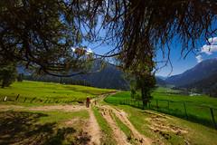 Tarsar Lake Trek (AvijitNandy) Tags: kashmir tarsarlake mountain lake