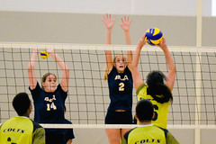 2016 Extramural Volleyball vs. Humber North-26 (centennial_colts) Tags: green scream 2016 2016ocaa extramural centennial colts centennialcolts college humber volleyball mens womens coed