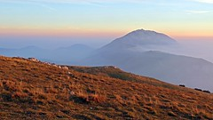 Sunset on Mt. Baldo (ab.130722jvkz) Tags: italy trentino alps easternalps bresciaandgardaprealps mountbaldo mountains
