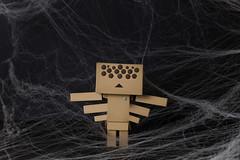 Happy Halloween! (Arielle.Nadel) Tags: danbo danboard revoltech yotsuba halloween costume spider toyphotography よつばと ダンボー